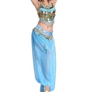 Halloween Princess Jasmine Belly Dancer Costume